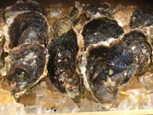 クリーミー牡蠣
