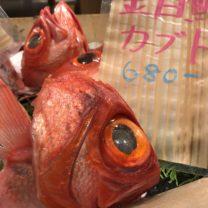 でっかい金目鯛のカブト