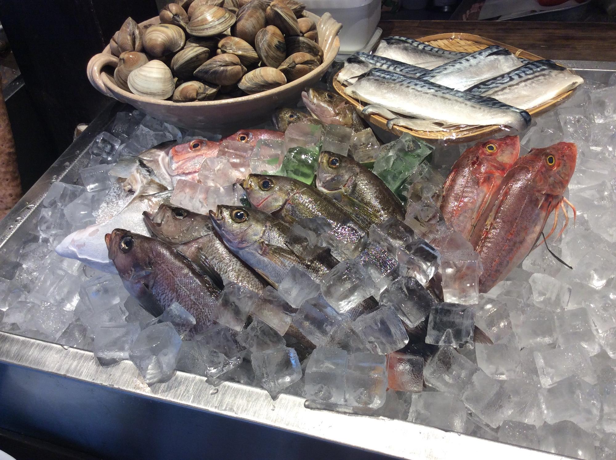 美味しいお魚