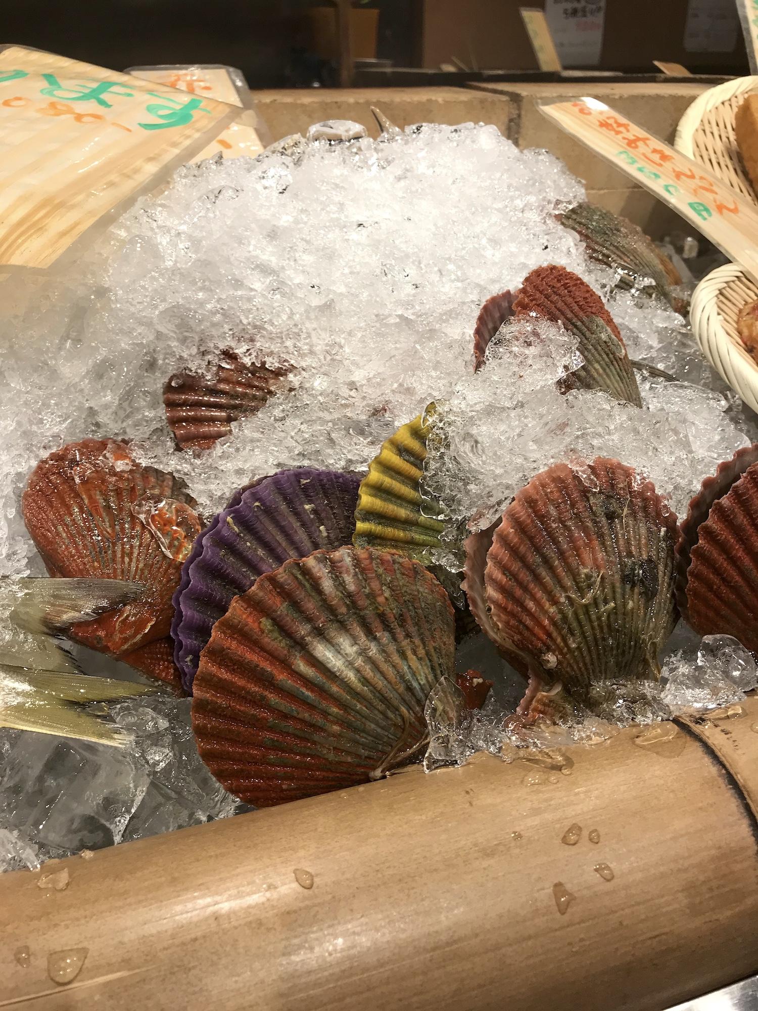 超新鮮なあっぱ貝