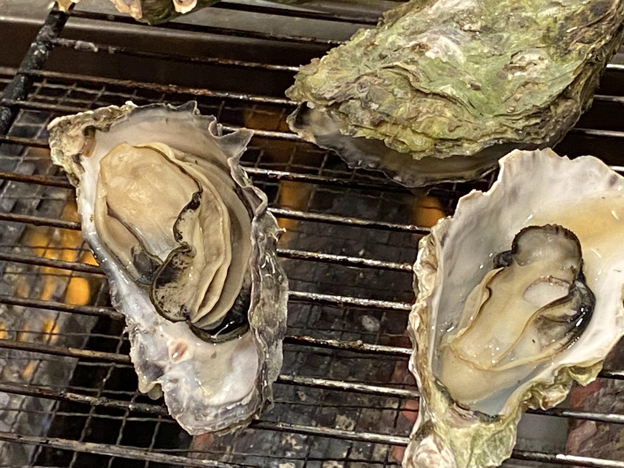 南伊勢から牡蠣の入荷が始まります!