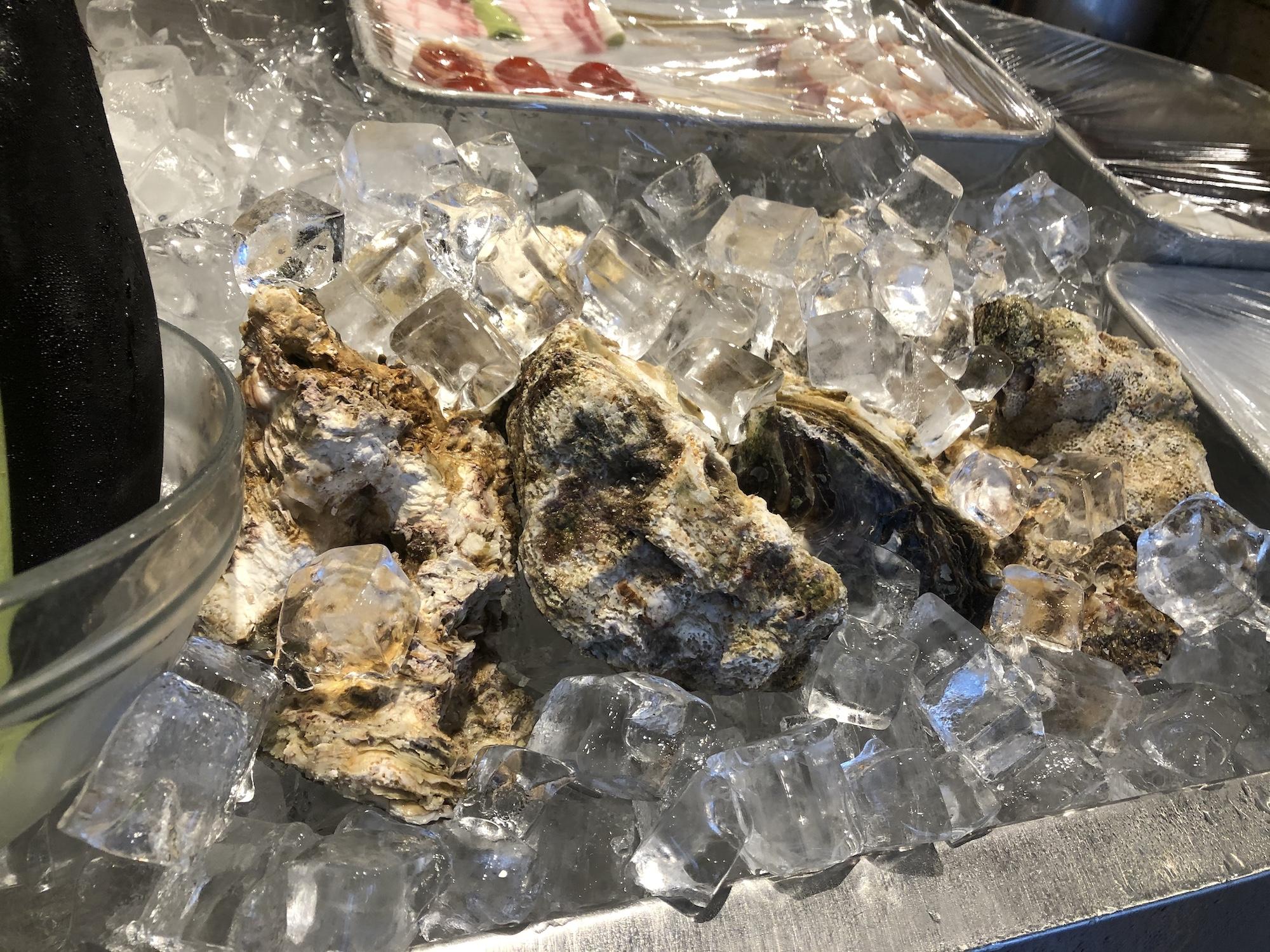 大量の岩牡蠣入荷しました