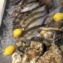 魚を食え!!